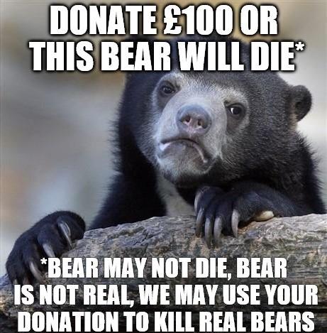 charity bear meme